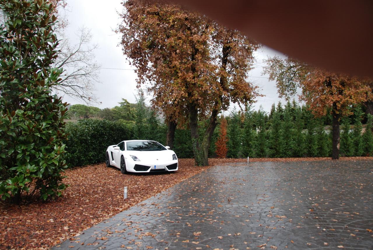 lamborghini-Lamborghini02.JPG