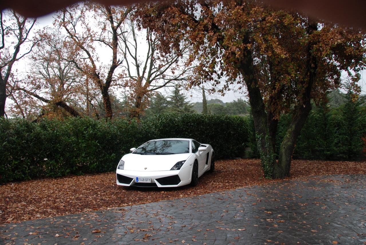 lamborghini-Lamborghini03.JPG