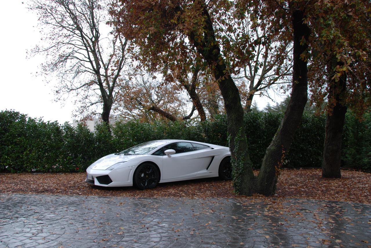 lamborghini-Lamborghini04.JPG