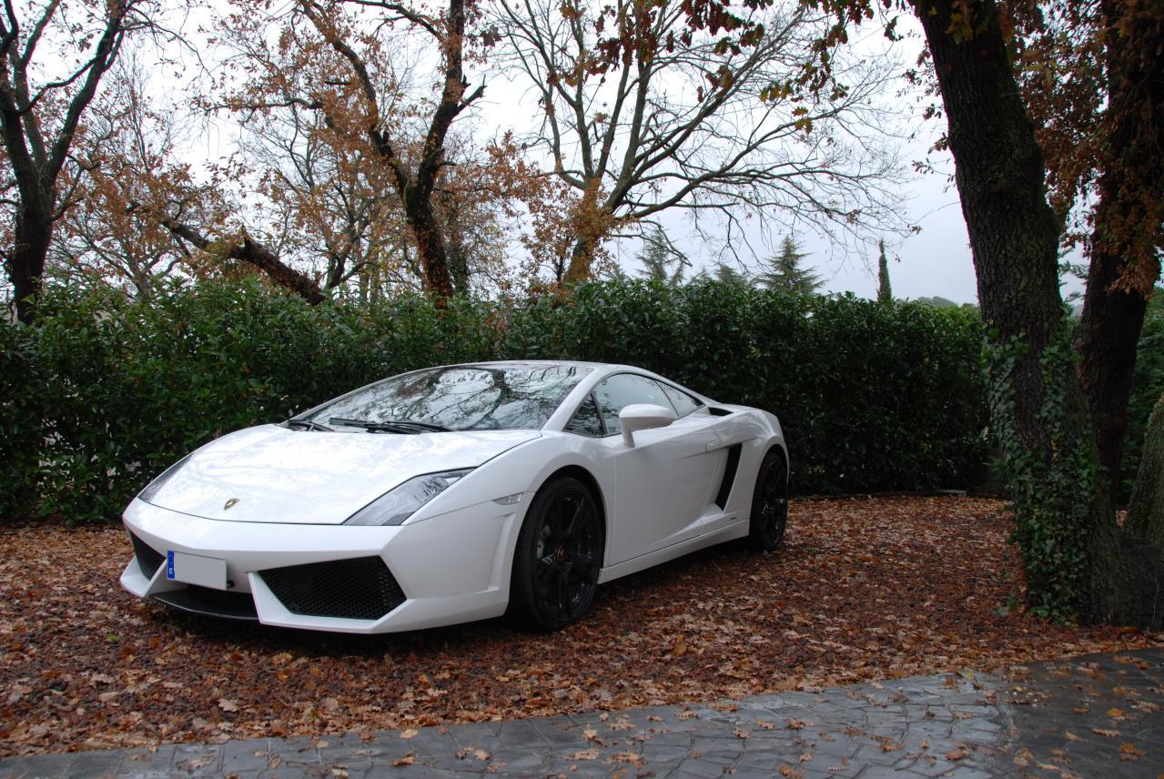 lamborghini-Lamborghini07.JPG