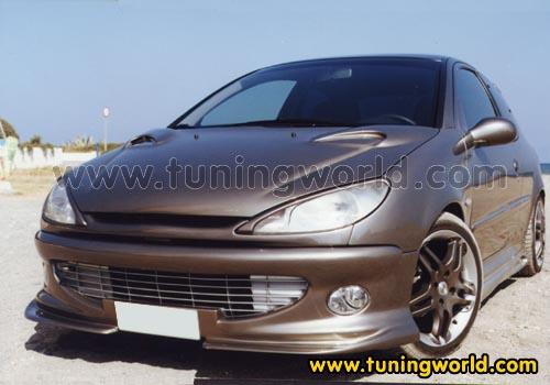 Tuning-Peugeot 206-206_ruben_1.jpg