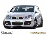 Caractere-Volkswagen Golf V-caractere_golfv_01_0.jpg